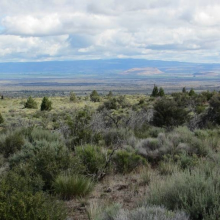Lava Beds National Monument located in the northeastern corner of the state of California, certainly is amazing.