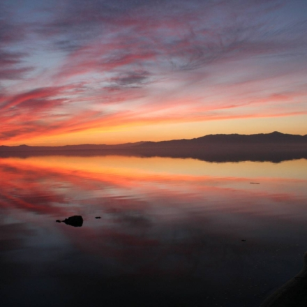 Visit the Salton Sea in Niland, a dead sea that was once a luxurious resort town