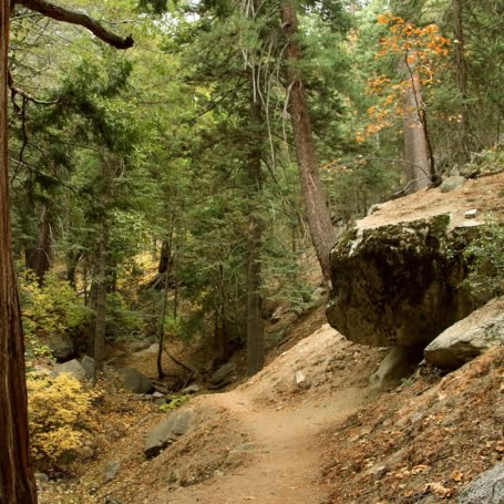 Ernie Maxwell Scenic Trail is one of Idyllwild's easier hikes but still packed with beautiful views and scenery. Great for the entire family!