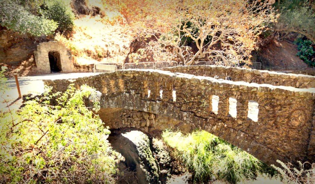 Alum Rock Mineral Springs