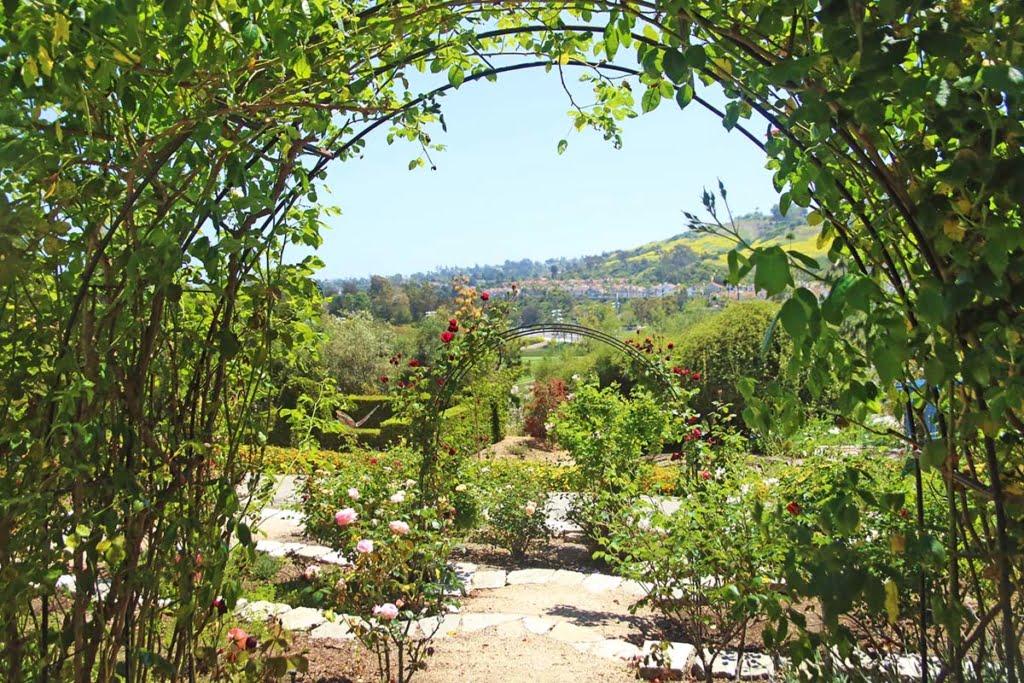 Niguel Botanical Preserve (4)