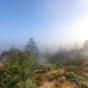 henry cowell observation deck (11)